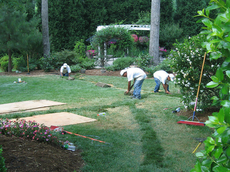 Barefoot team installing drainage system in yard