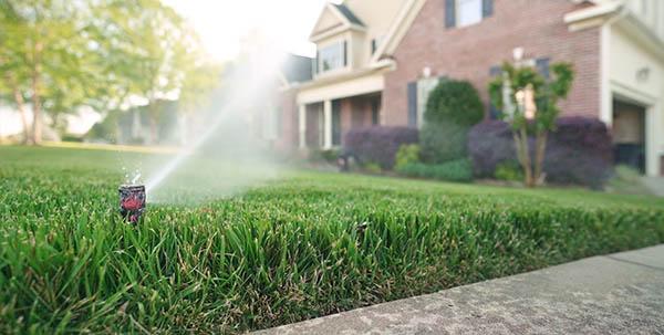 lawn care irrigation