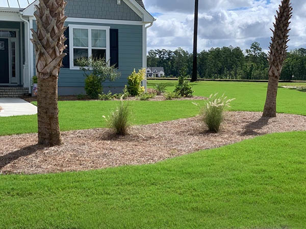 Carolina Beach home with landscaped lawn
